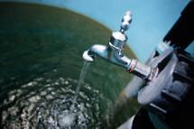 Ein Wasserhahn füllt ein Becken mit Wasser